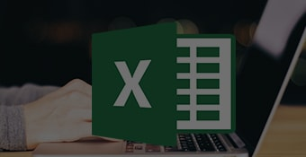 MS Excel 2013 Bundle