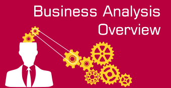Business Analysis Overview