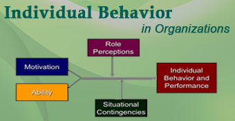 Individual Behavior in Organizations